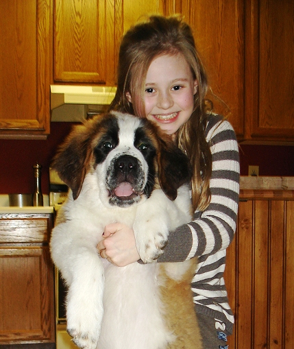 Hallelujah Saint Bernards - Farm Raised Dry Mouth Companion Dogs